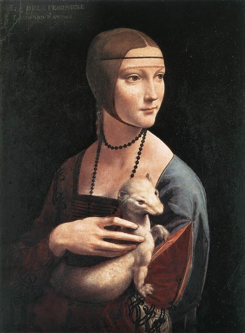 Lady with an Ermine Caterina da Vinci Portrait of Mather №4 Artist Leonardo da Vinci